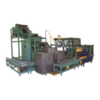 packaging machines for fasteners with orientation system for cartoning